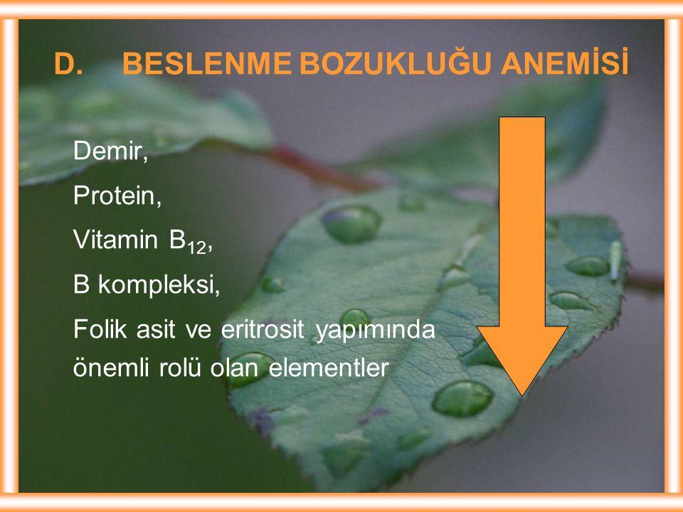 D. BESLENME BOZUKLUĞU ANEMİSİ