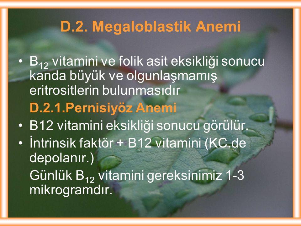 D.2. Megaloblastik Anemi B12 vitamini ve folik asit eksikliği sonucu kanda büyük ve olgunlaşmamış eritrositlerin bulunmasıdır.