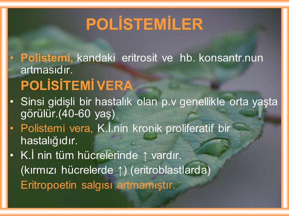 POLİSTEMİLER POLİSİTEMİ VERA