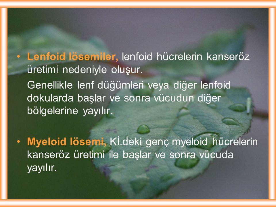 Lenfoid lösemiler, lenfoid hücrelerin kanseröz üretimi nedeniyle oluşur.
