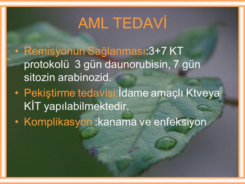 AML TEDAVİ Remisyonun Sağlanması:3+7 KT protokolü 3 gün daunorubisin, 7 gün sitozin arabinozid.