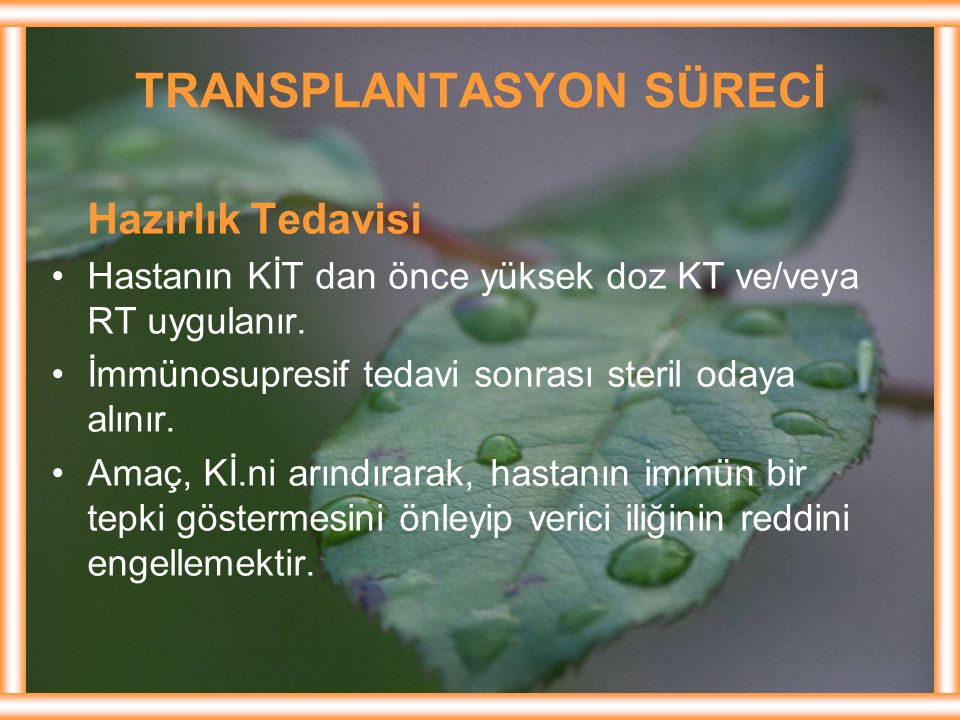 TRANSPLANTASYON SÜRECİ