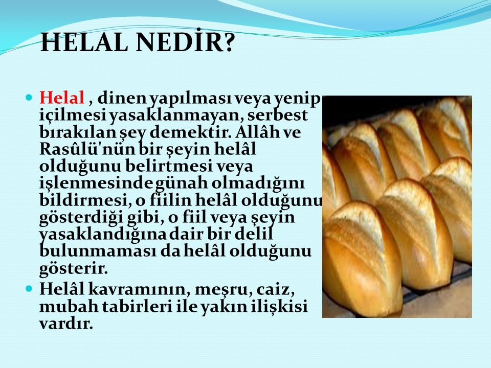 HELAL NEDİR