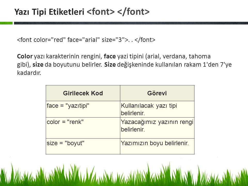 Yazı Tipi Etiketleri <font> </font>