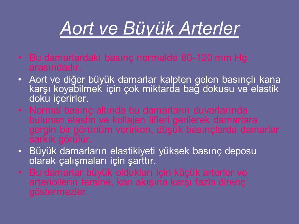 Aort ve Büyük Arterler Bu damarlardaki basınç normalde 80-120 mm Hg arasındadır.