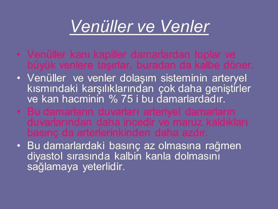 Venüller ve Venler Venüller kanı kapiller damarlardan toplar ve büyük venlere taşırlar, buradan da kalbe döner.