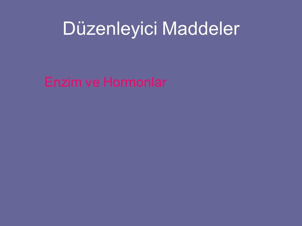 Düzenleyici Maddeler Enzim ve Hormonlar