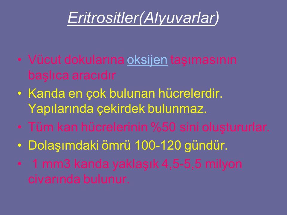 Eritrositler(Alyuvarlar)