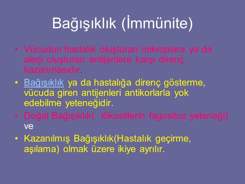 Bağışıklık (İmmünite)