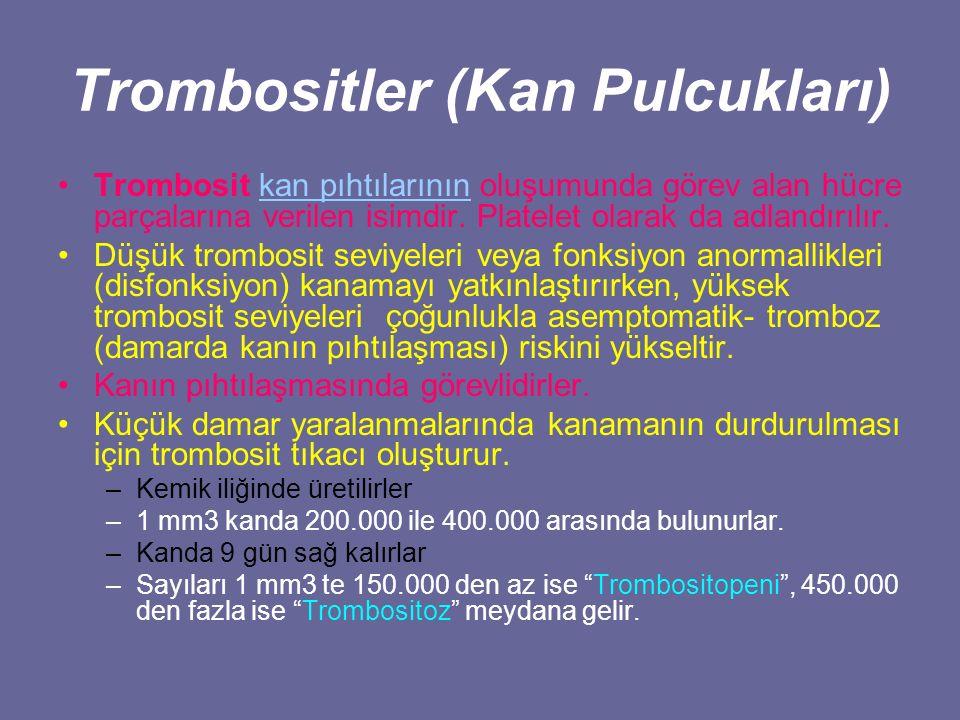 Trombositler (Kan Pulcukları)