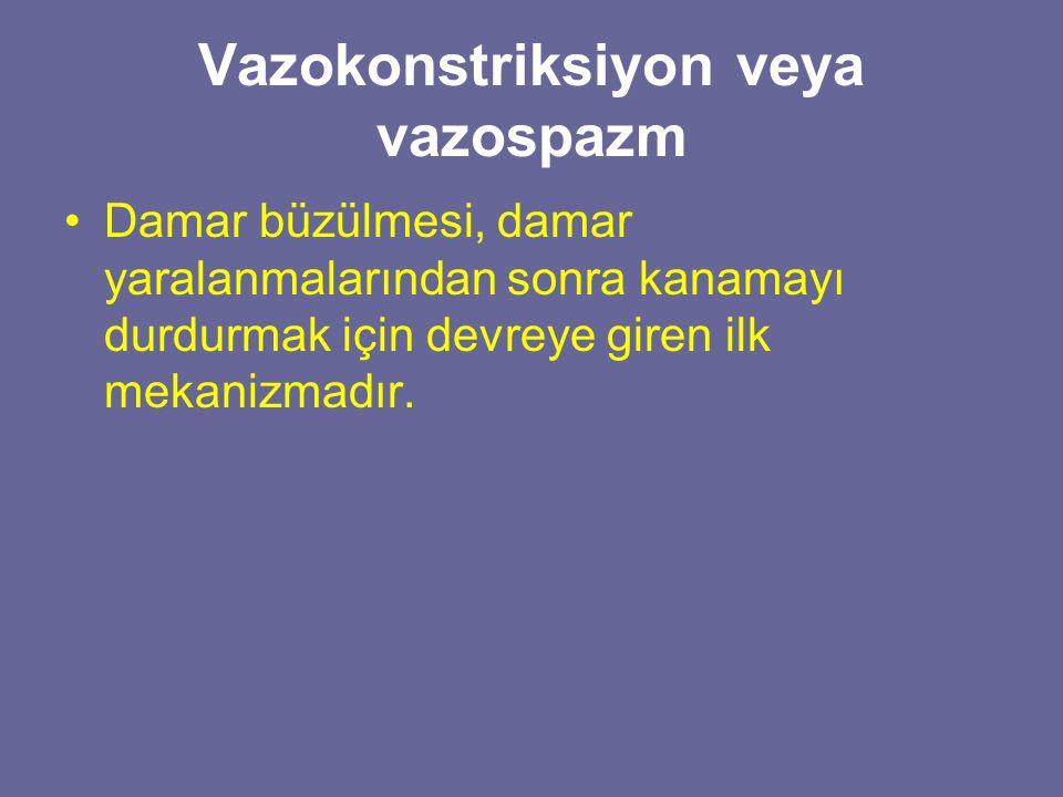 Vazokonstriksiyon veya vazospazm