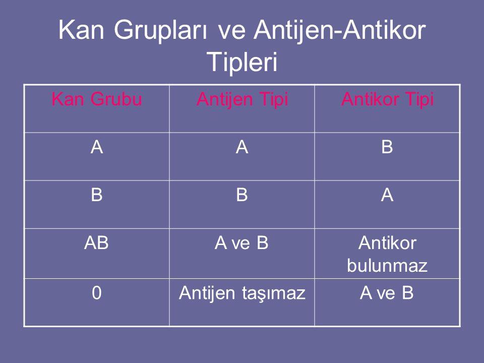 Kan Grupları ve Antijen-Antikor Tipleri