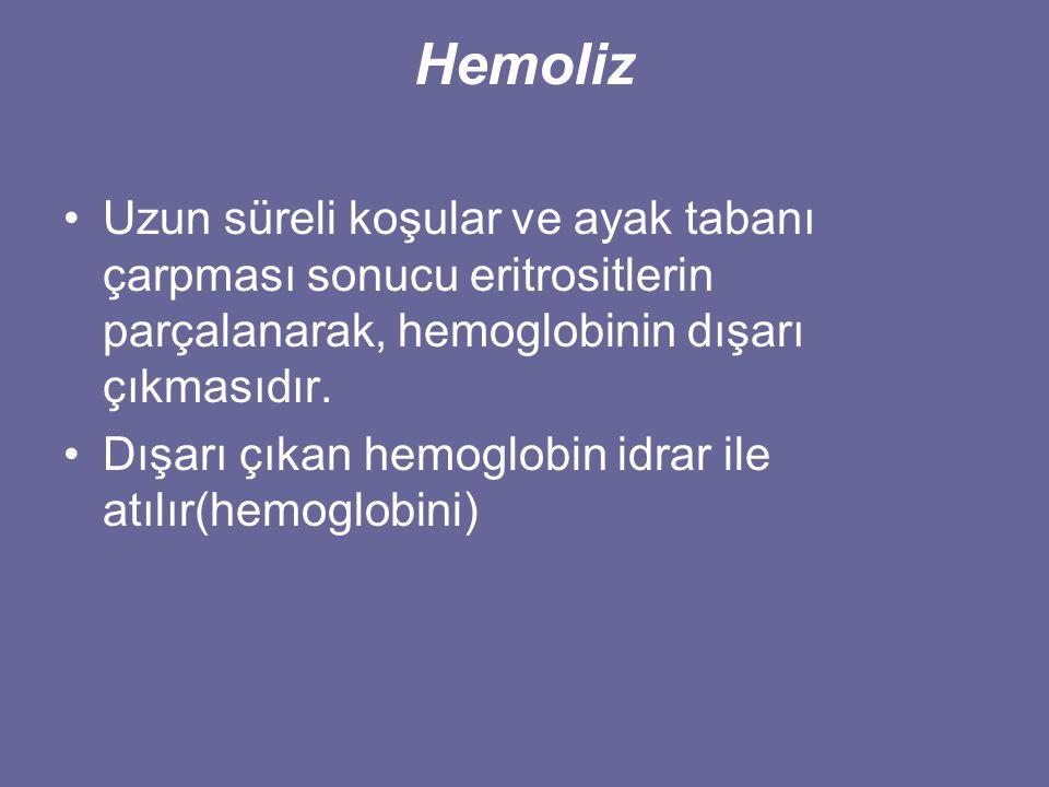 Hemoliz Uzun süreli koşular ve ayak tabanı çarpması sonucu eritrositlerin parçalanarak, hemoglobinin dışarı çıkmasıdır.