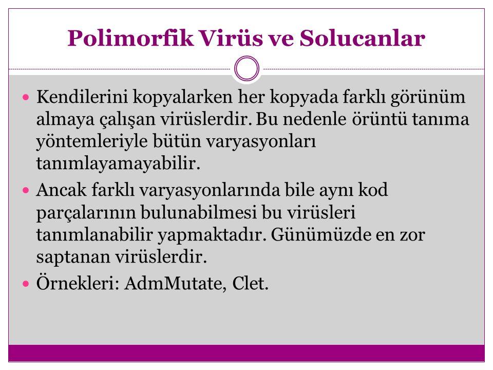 Polimorfik Virüs ve Solucanlar