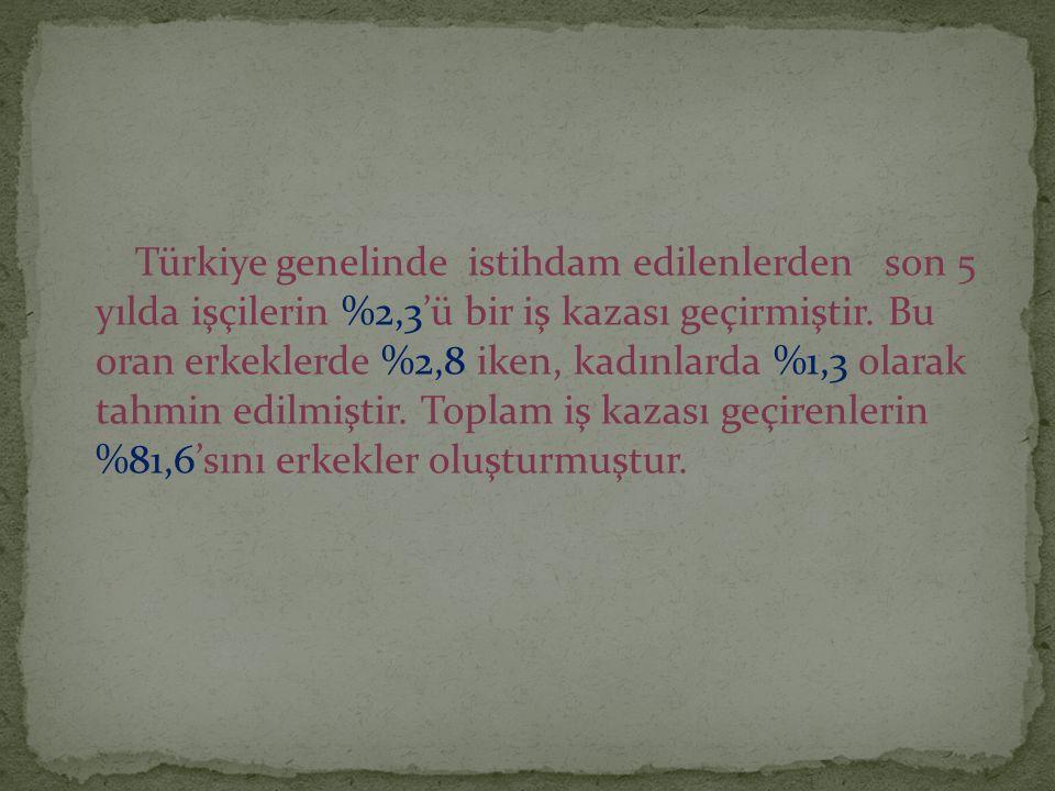 Türkiye genelinde istihdam edilenlerden son 5 yılda işçilerin %2,3'ü bir iş kazası geçirmiştir.
