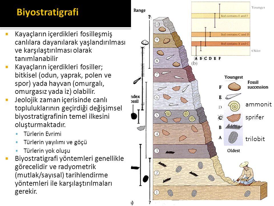 Biyostratigrafi Kayaçların içerdikleri fosilleşmiş canlılara dayanılarak yaşlandırılması ve karşılaştırılması olarak tanımlanabilir.