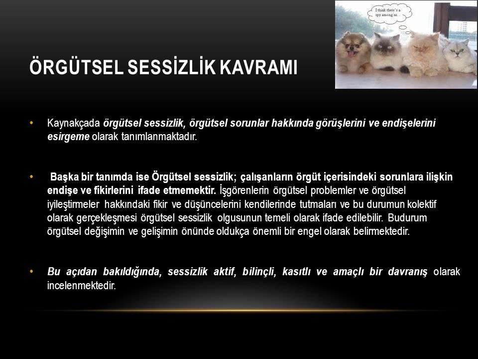 ÖRGÜTSEL SESSİZLİK KAVRAMI
