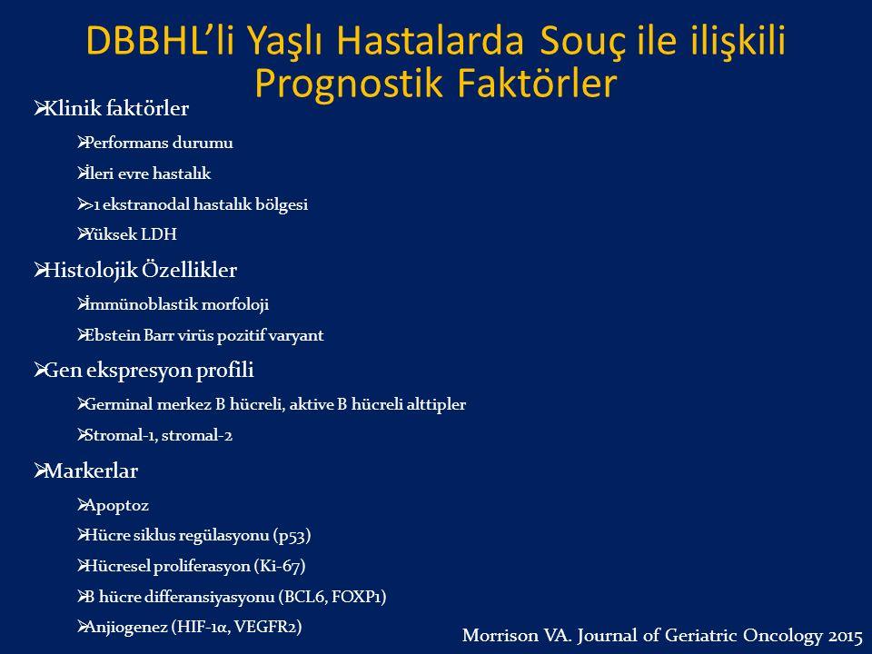 DBBHL'li Yaşlı Hastalarda Souç ile ilişkili Prognostik Faktörler