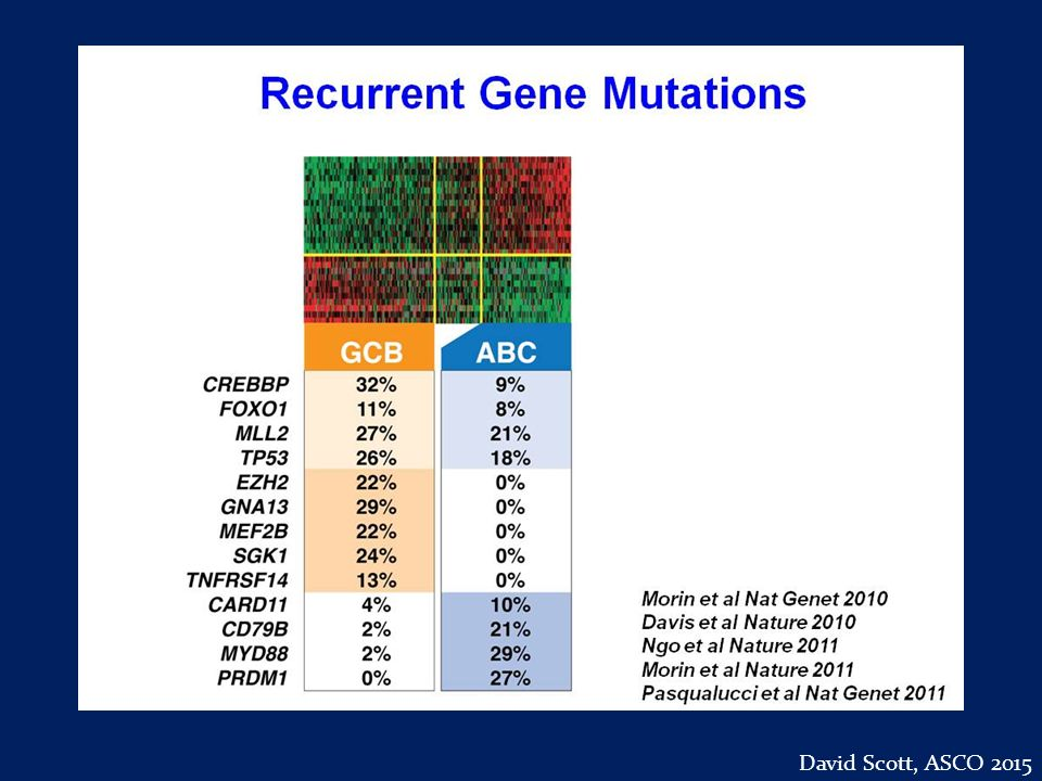 Slide 44 David Scott, ASCO 2015
