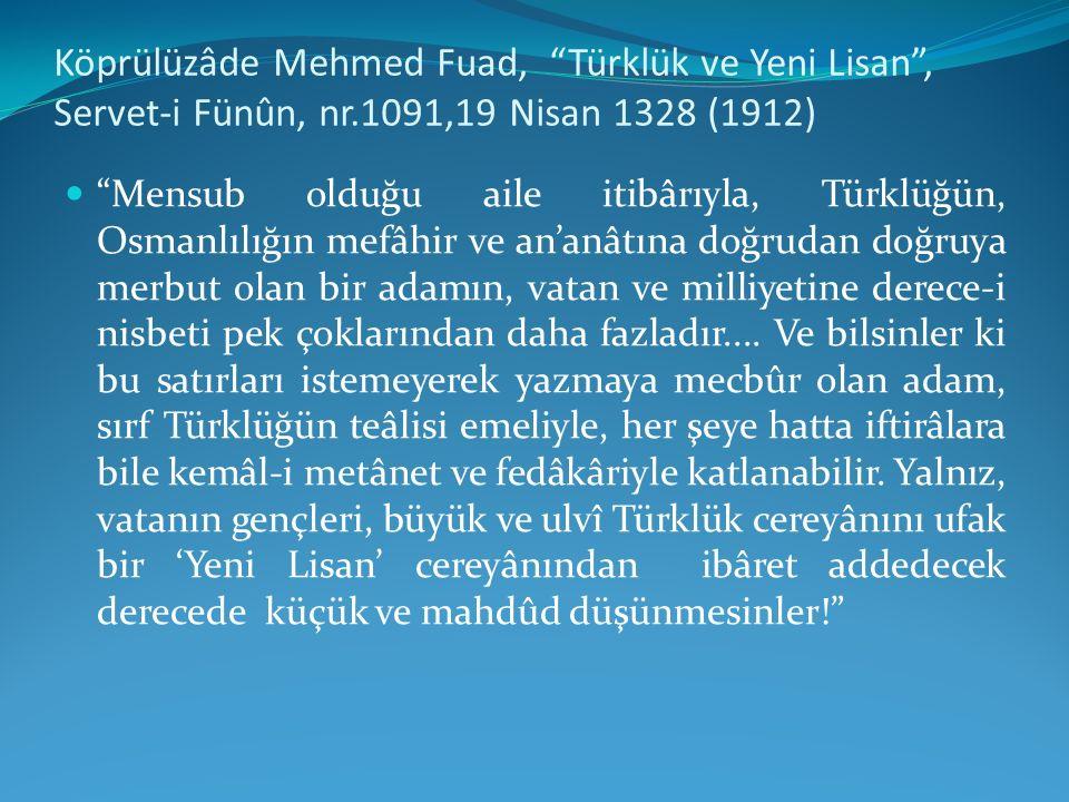 Köprülüzâde Mehmed Fuad, Türklük ve Yeni Lisan , Servet-i Fünûn, nr
