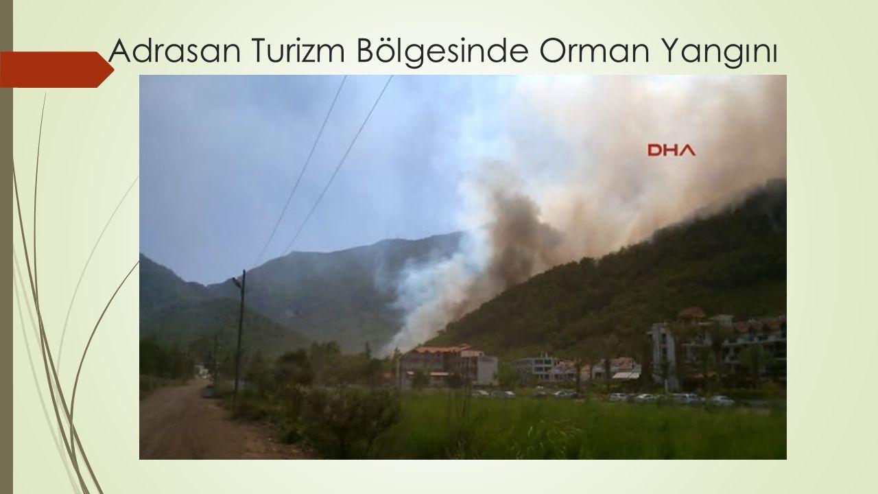 Adrasan Turizm Bölgesinde Orman Yangını