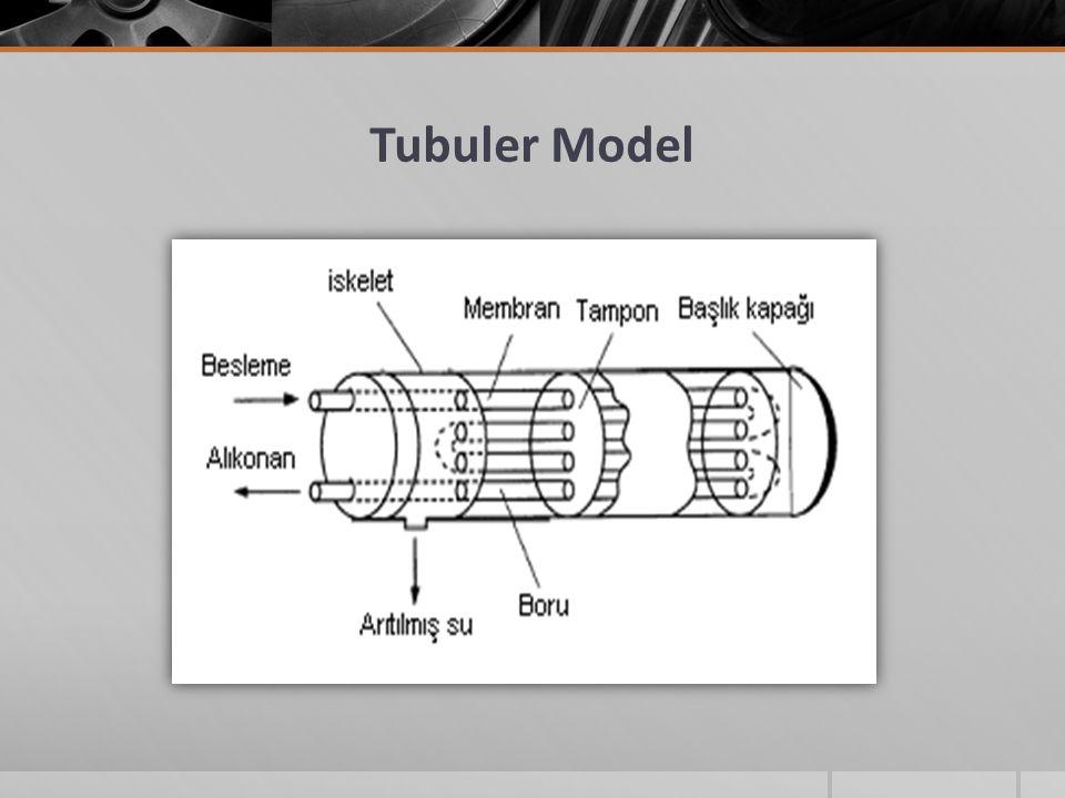 Tubuler Model