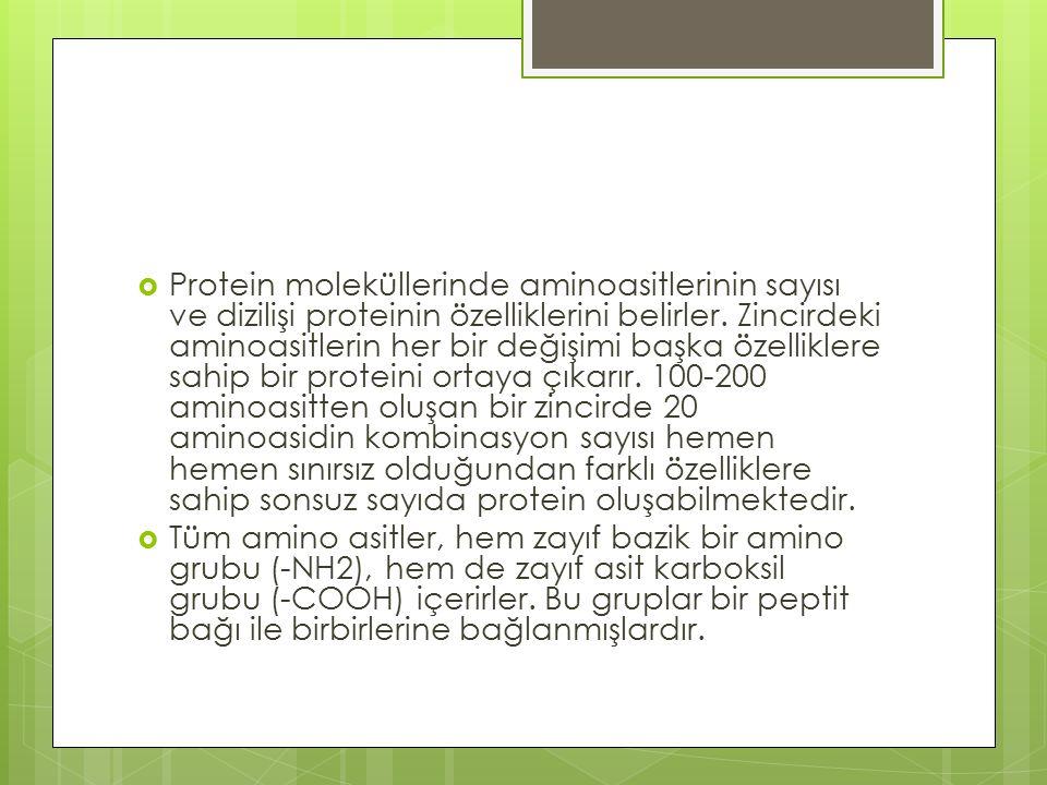 Protein moleküllerinde aminoasitlerinin sayısı ve dizilişi proteinin özelliklerini belirler. Zincirdeki aminoasitlerin her bir değişimi başka özelliklere sahip bir proteini ortaya çıkarır. 100-200 aminoasitten oluşan bir zincirde 20 aminoasidin kombinasyon sayısı hemen hemen sınırsız olduğundan farklı özelliklere sahip sonsuz sayıda protein oluşabilmektedir.