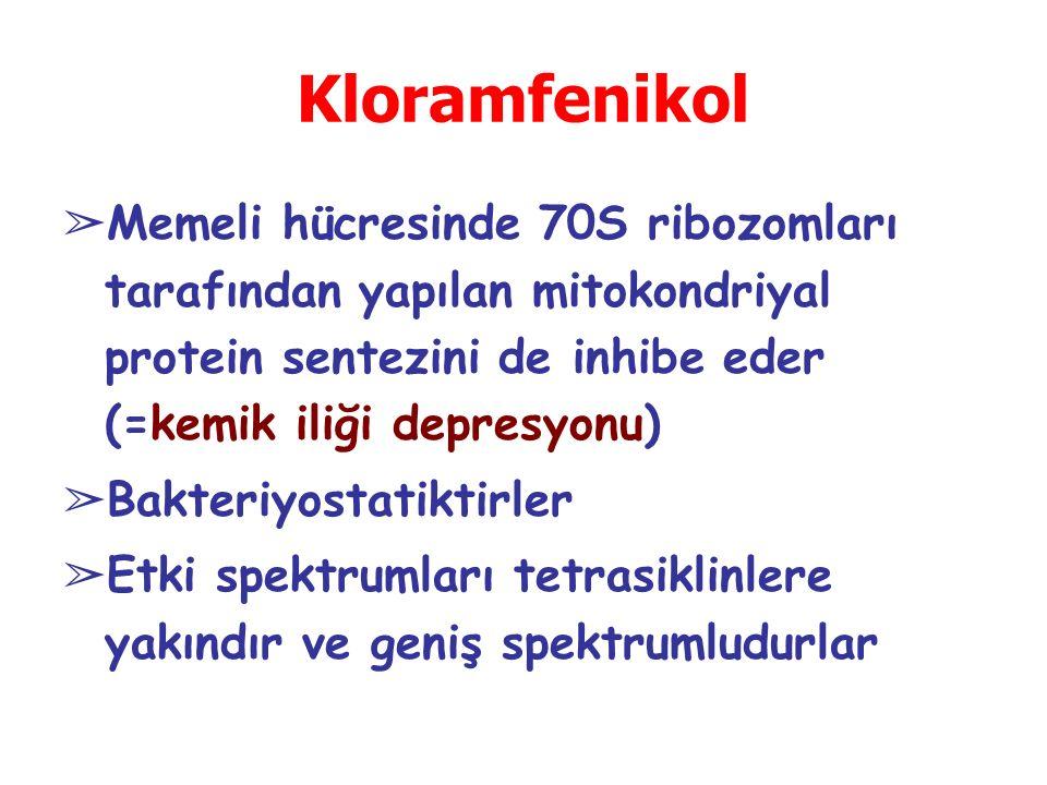 Kloramfenikol Memeli hücresinde 70S ribozomları tarafından yapılan mitokondriyal protein sentezini de inhibe eder (=kemik iliği depresyonu)