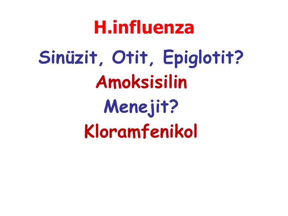 Sinüzit, Otit, Epiglotit