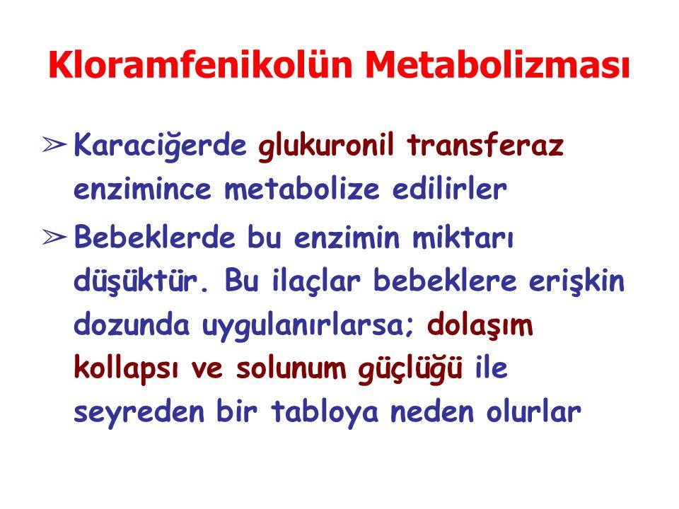 Kloramfenikolün Metabolizması
