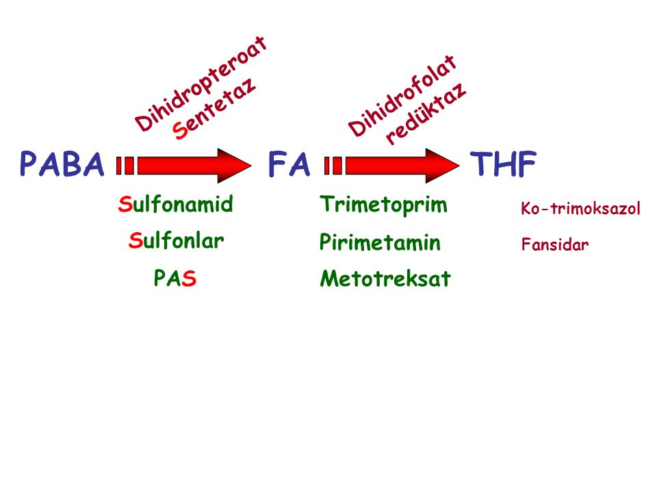 PABA FA THF Dihidropteroat Sentetaz Dihidrofolat redüktaz Sulfonamid