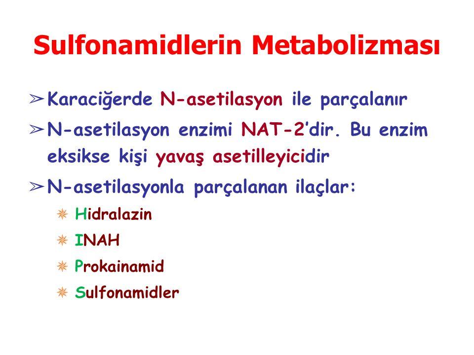 Sulfonamidlerin Metabolizması