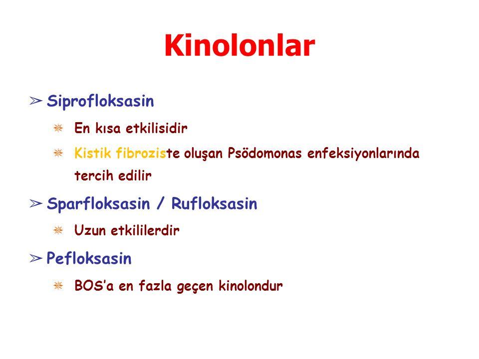 Kinolonlar Siprofloksasin Sparfloksasin / Rufloksasin Pefloksasin
