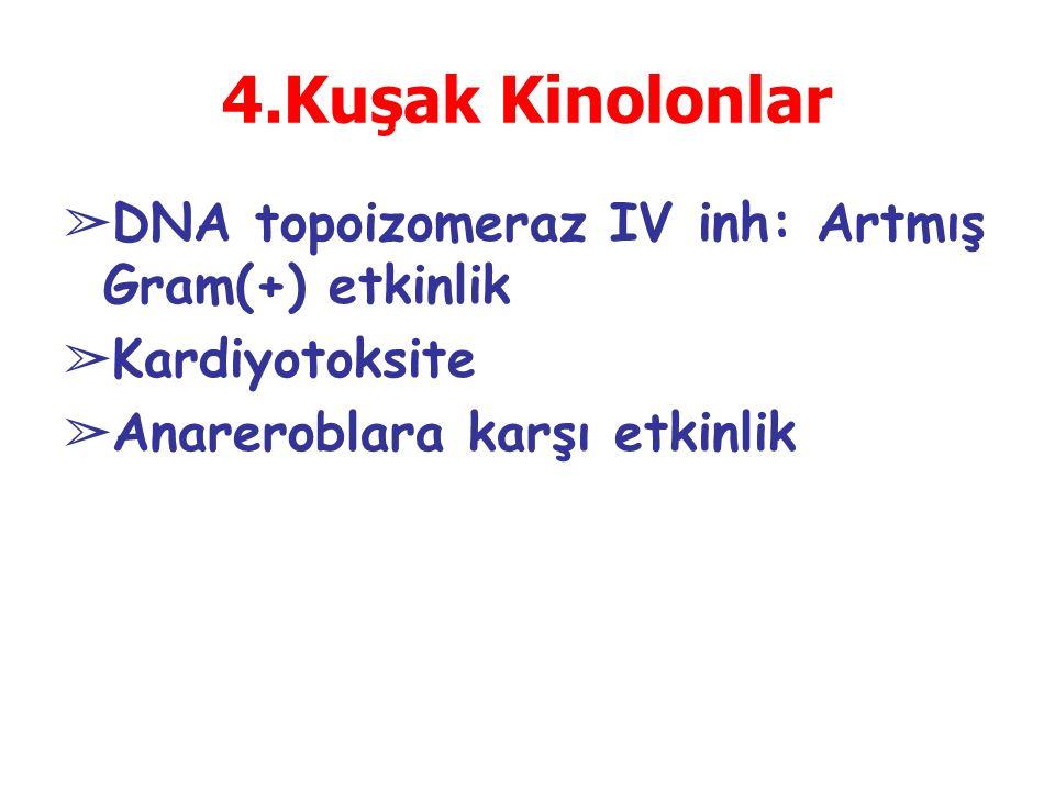 4.Kuşak Kinolonlar DNA topoizomeraz IV inh: Artmış Gram(+) etkinlik
