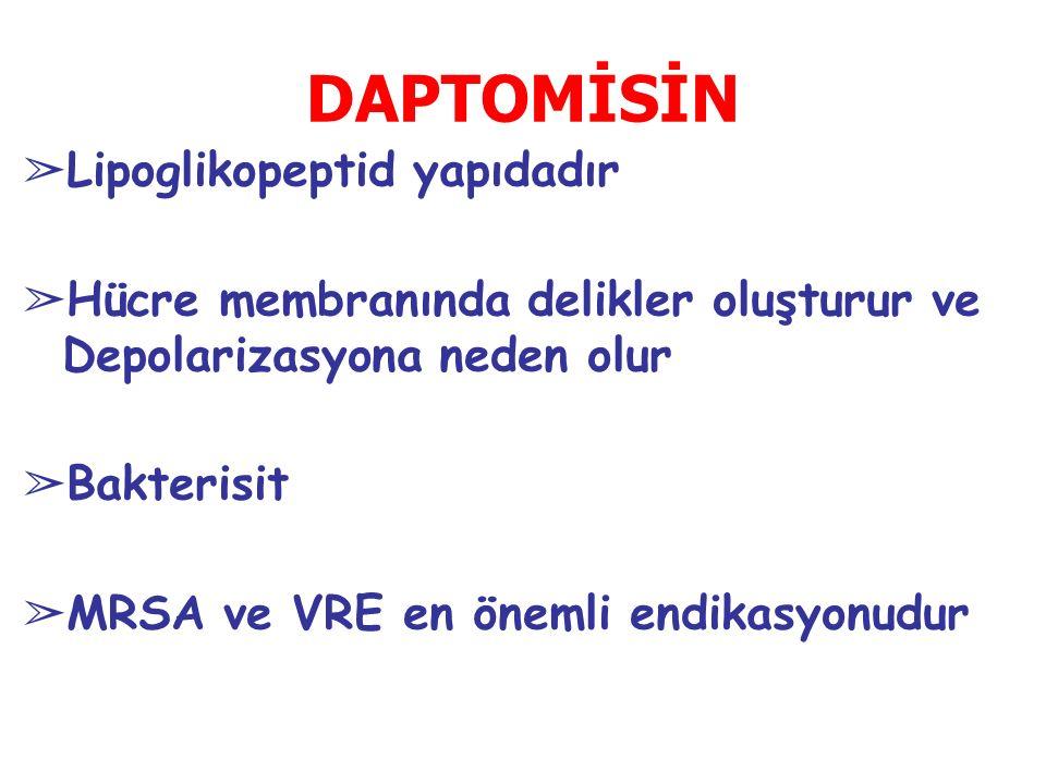 DAPTOMİSİN Lipoglikopeptid yapıdadır