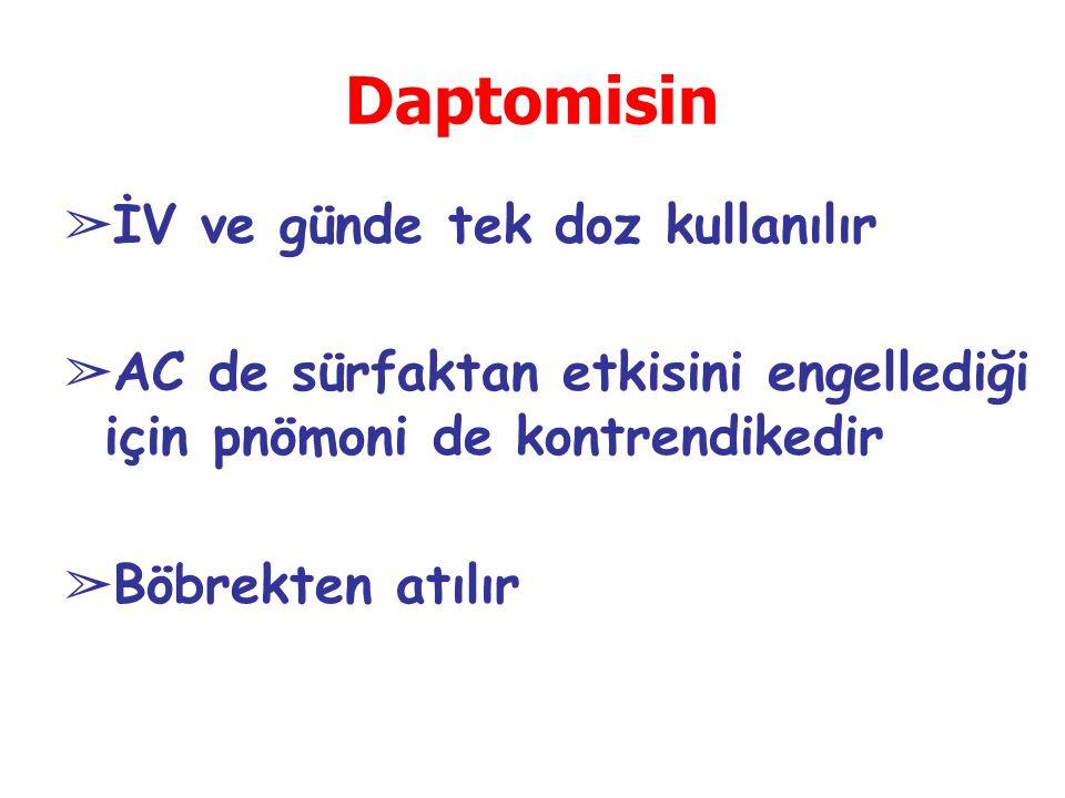 Daptomisin İV ve günde tek doz kullanılır