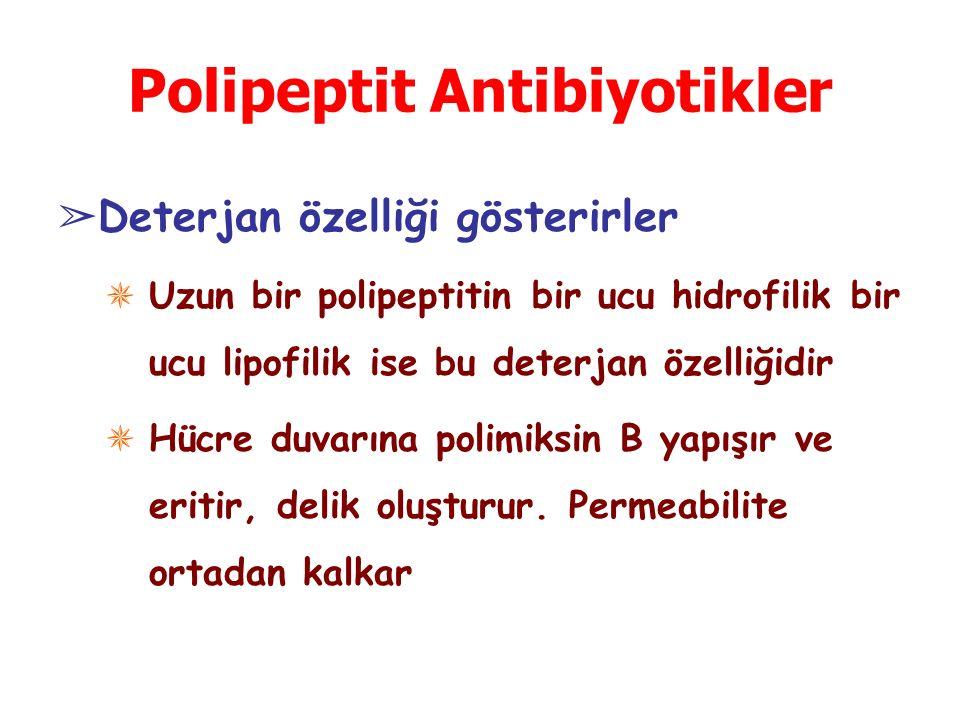 Polipeptit Antibiyotikler