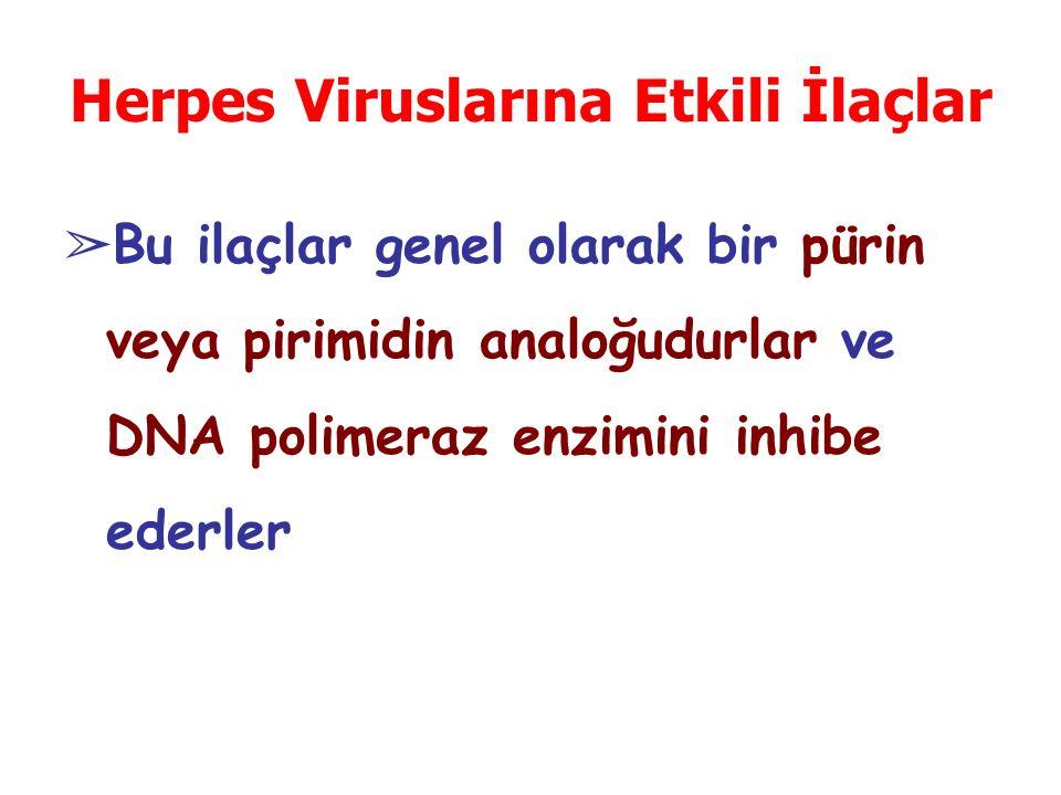 Herpes Viruslarına Etkili İlaçlar