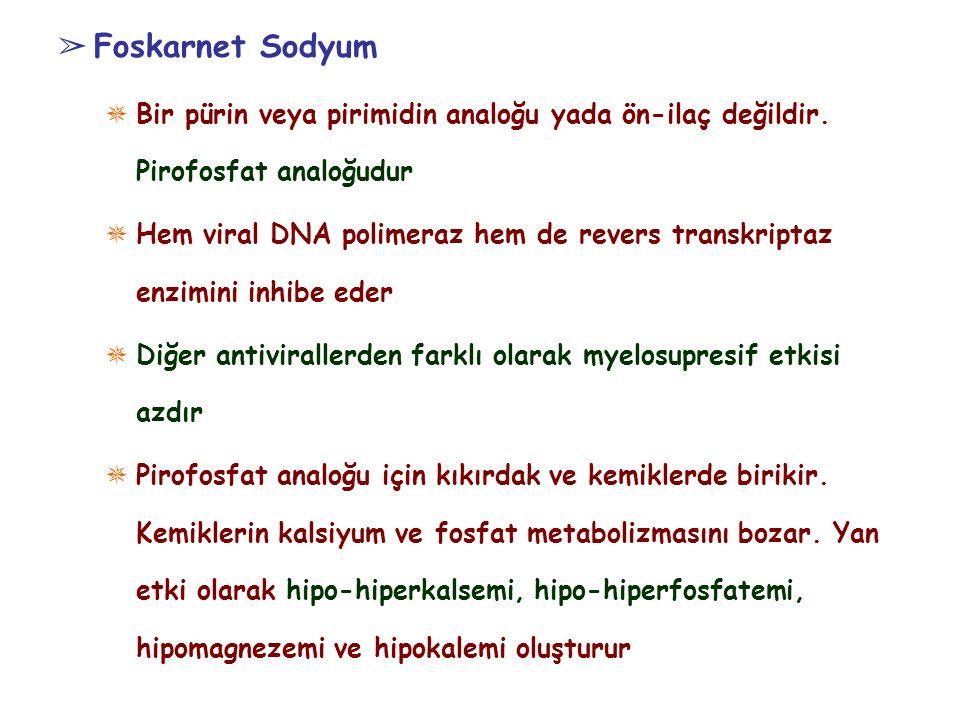 Foskarnet Sodyum Bir pürin veya pirimidin analoğu yada ön-ilaç değildir. Pirofosfat analoğudur.