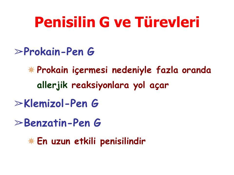 Penisilin G ve Türevleri
