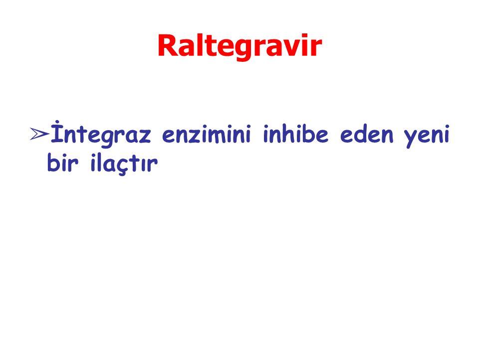 Raltegravir İntegraz enzimini inhibe eden yeni bir ilaçtır