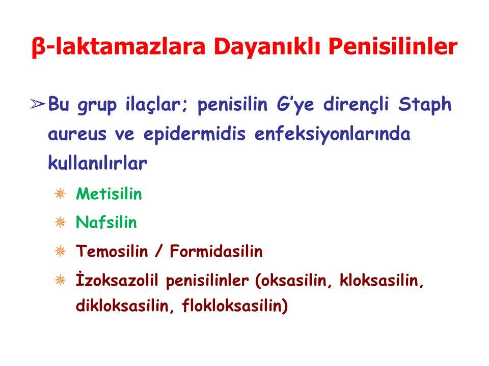 β-laktamazlara Dayanıklı Penisilinler