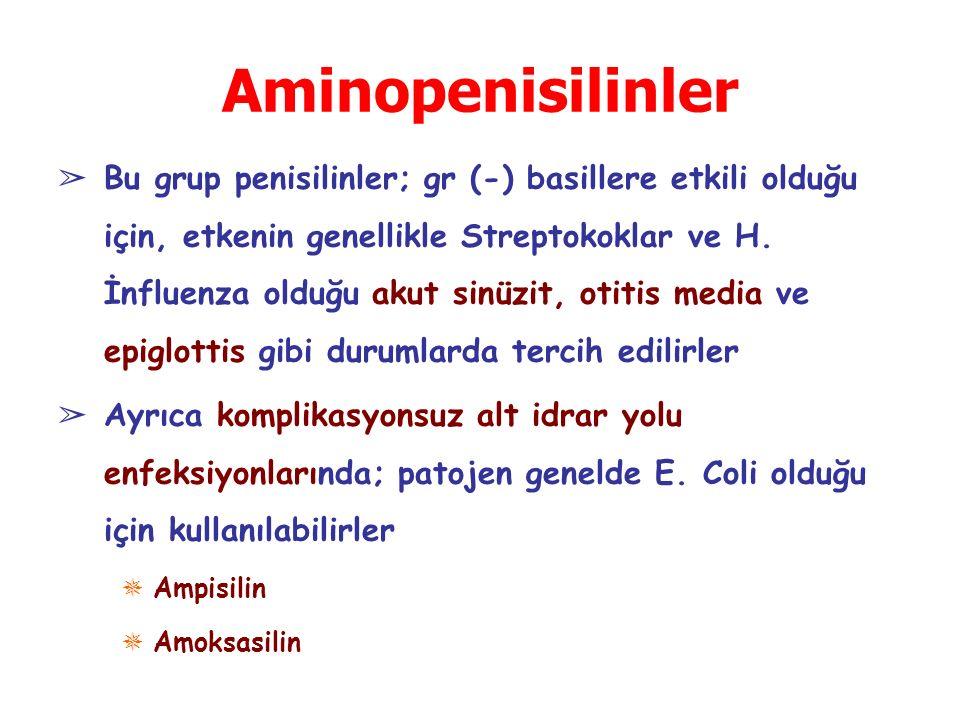 Aminopenisilinler