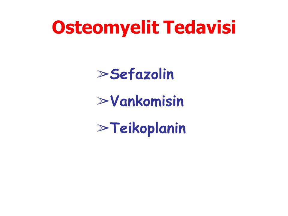 Osteomyelit Tedavisi Sefazolin Vankomisin Teikoplanin