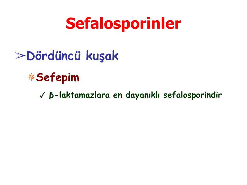 Sefalosporinler Dördüncü kuşak Sefepim