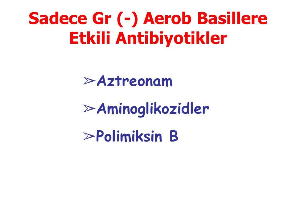 Sadece Gr (-) Aerob Basillere Etkili Antibiyotikler