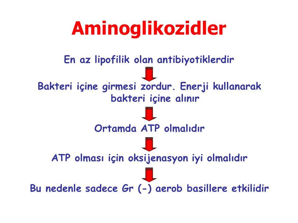 Aminoglikozidler En az lipofilik olan antibiyotiklerdir