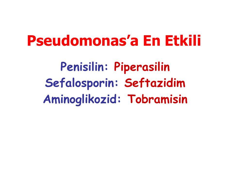 Pseudomonas'a En Etkili