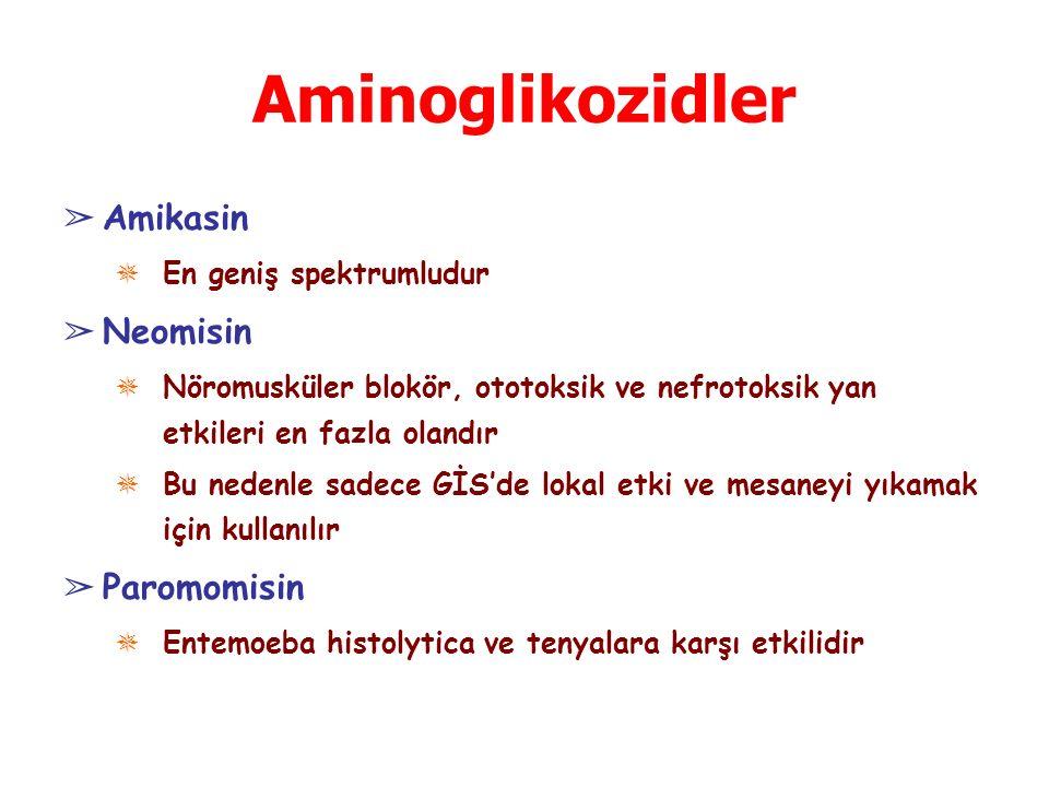 Aminoglikozidler Amikasin Neomisin Paromomisin En geniş spektrumludur