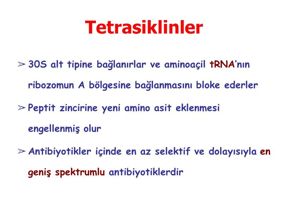Tetrasiklinler 30S alt tipine bağlanırlar ve aminoaçil tRNA'nın ribozomun A bölgesine bağlanmasını bloke ederler.